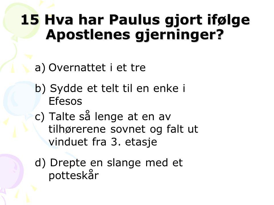 15 Hva har Paulus gjort ifølge Apostlenes gjerninger