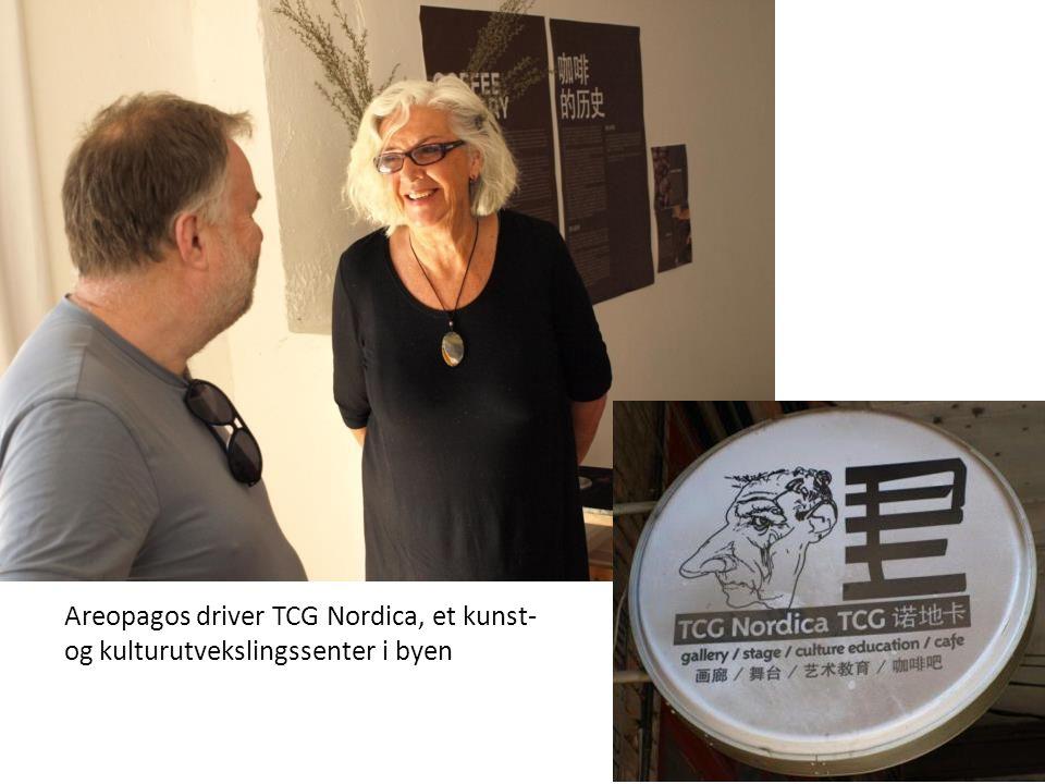 Areopagos driver TCG Nordica, et kunst- og kulturutvekslingssenter i byen