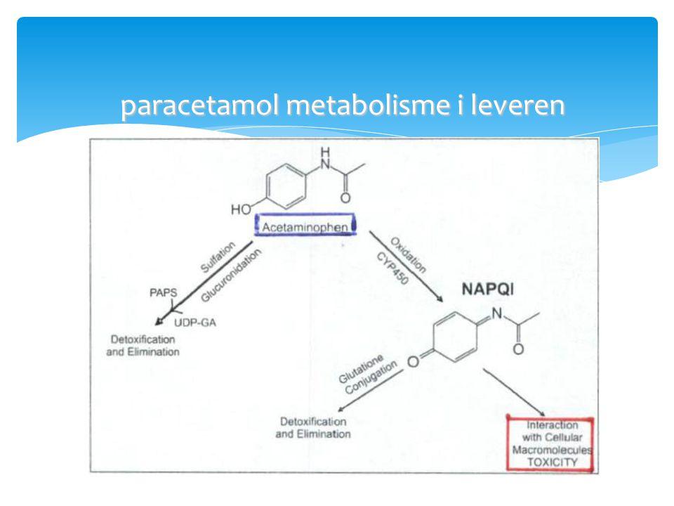 paracetamol metabolisme i leveren