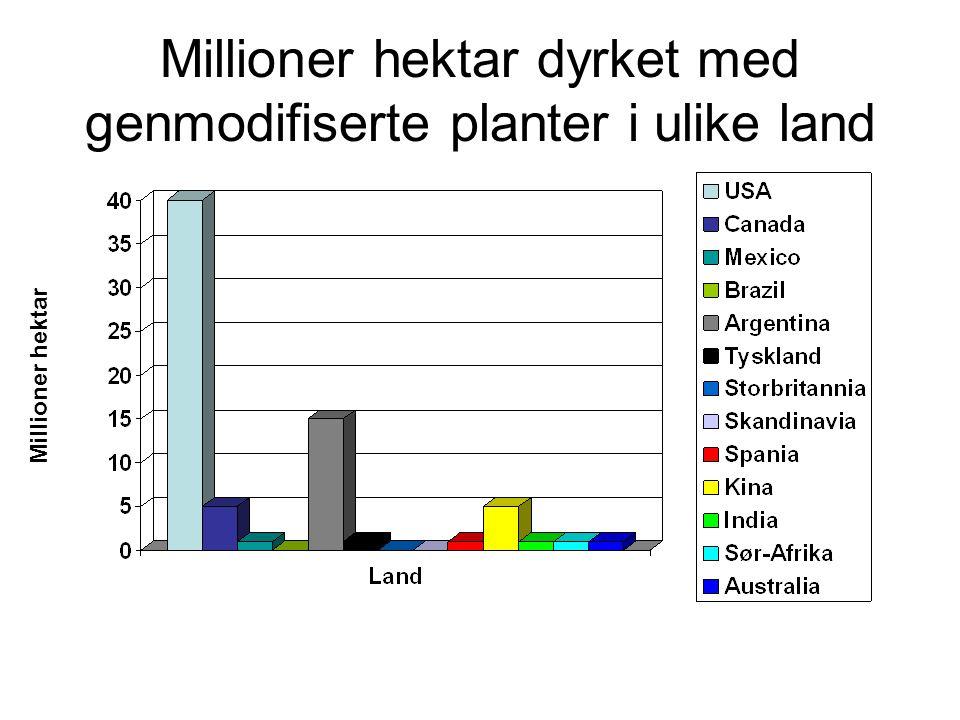 Millioner hektar dyrket med genmodifiserte planter i ulike land