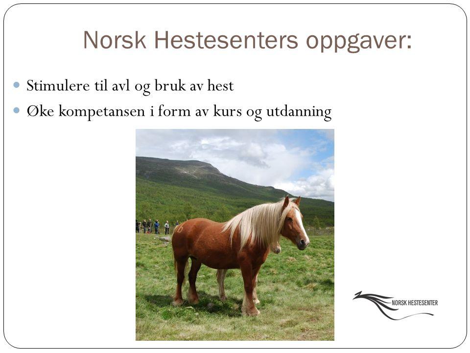 Norsk Hestesenters oppgaver: