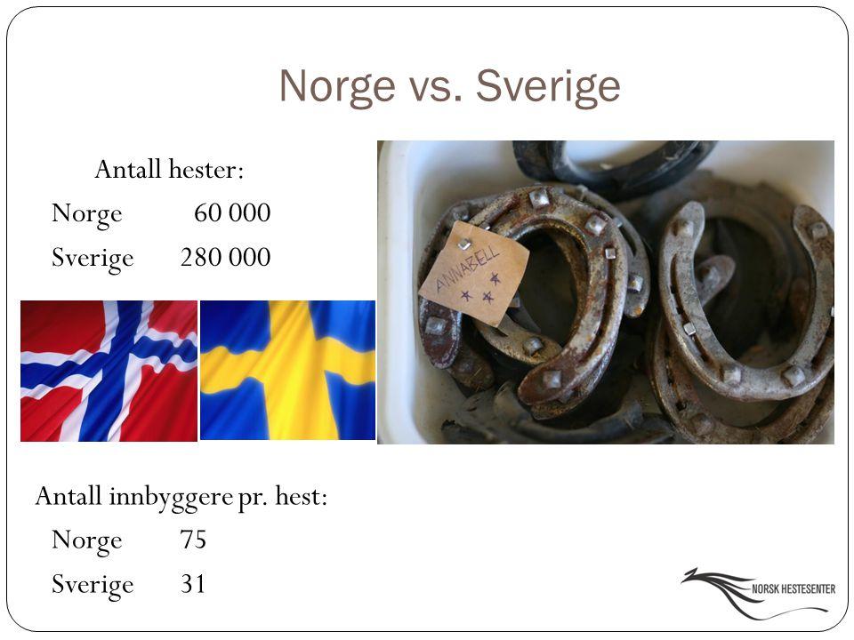Norge vs. Sverige Antall hester: Norge 60 000 Sverige 280 000