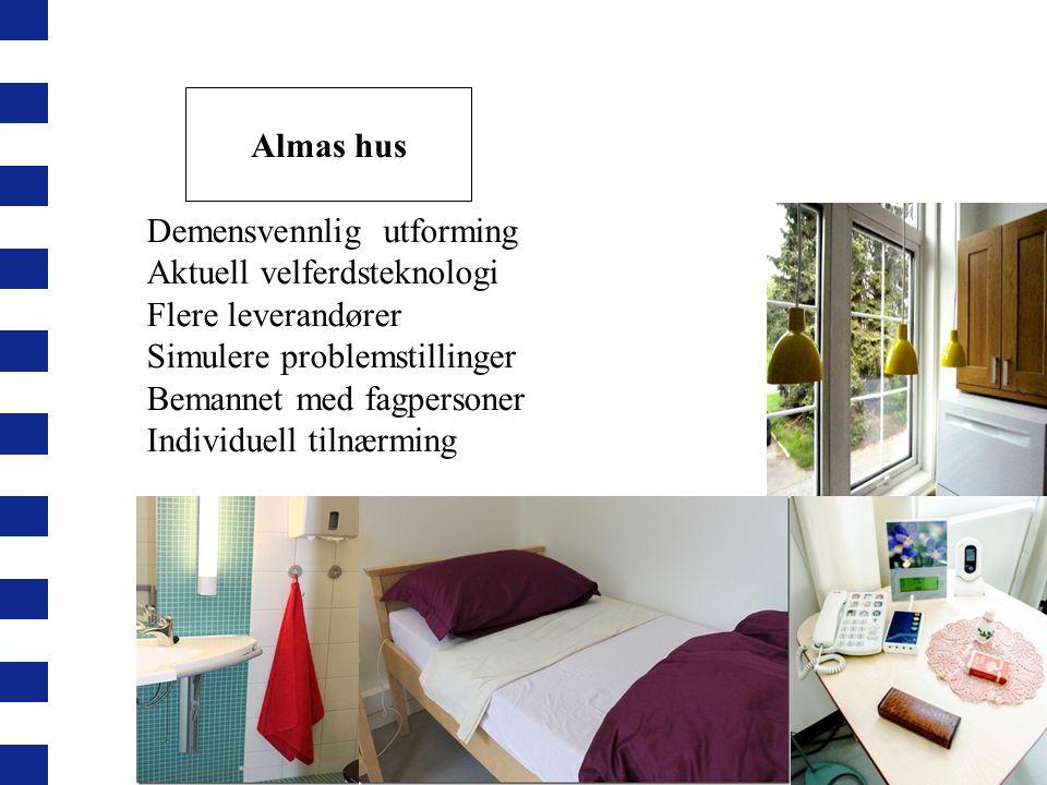 Almas hus Demensvennlig utforming. Aktuell velferdsteknologi. Flere leverandører. Simulere problemstillinger.