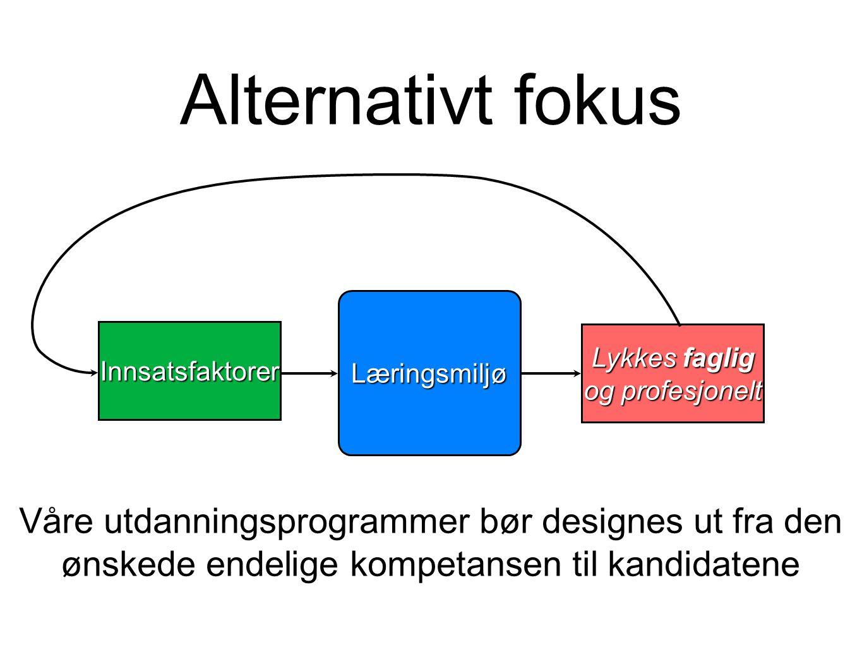 Alternativt fokus Læringsmiljø. Innsatsfaktorer. Lykkes faglig og profesjonelt. Lykkes faglig og profesjonelt.