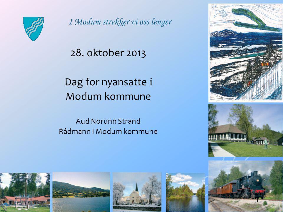 Rådmann i Modum kommune
