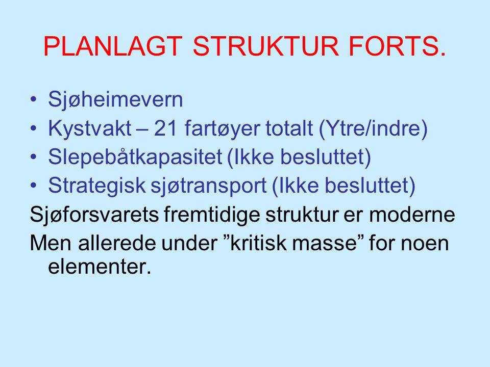 PLANLAGT STRUKTUR FORTS.