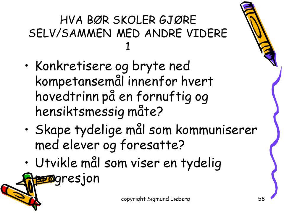 HVA BØR SKOLER GJØRE SELV/SAMMEN MED ANDRE VIDERE 1
