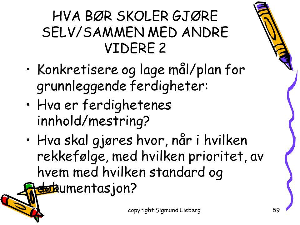 HVA BØR SKOLER GJØRE SELV/SAMMEN MED ANDRE VIDERE 2