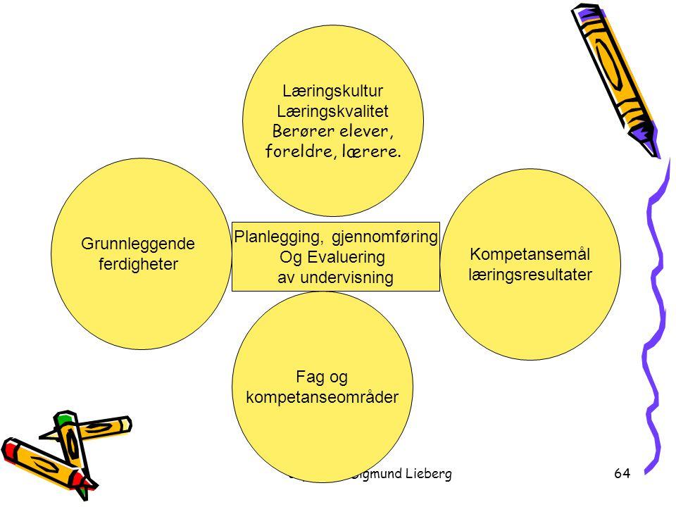 Planlegging, gjennomføring Og Evaluering av undervisning
