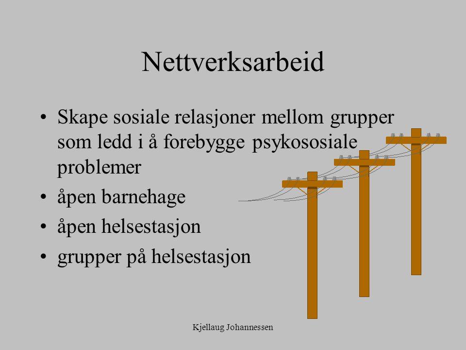 Nettverksarbeid Skape sosiale relasjoner mellom grupper som ledd i å forebygge psykososiale problemer.