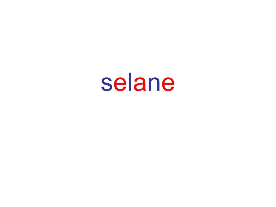 selane
