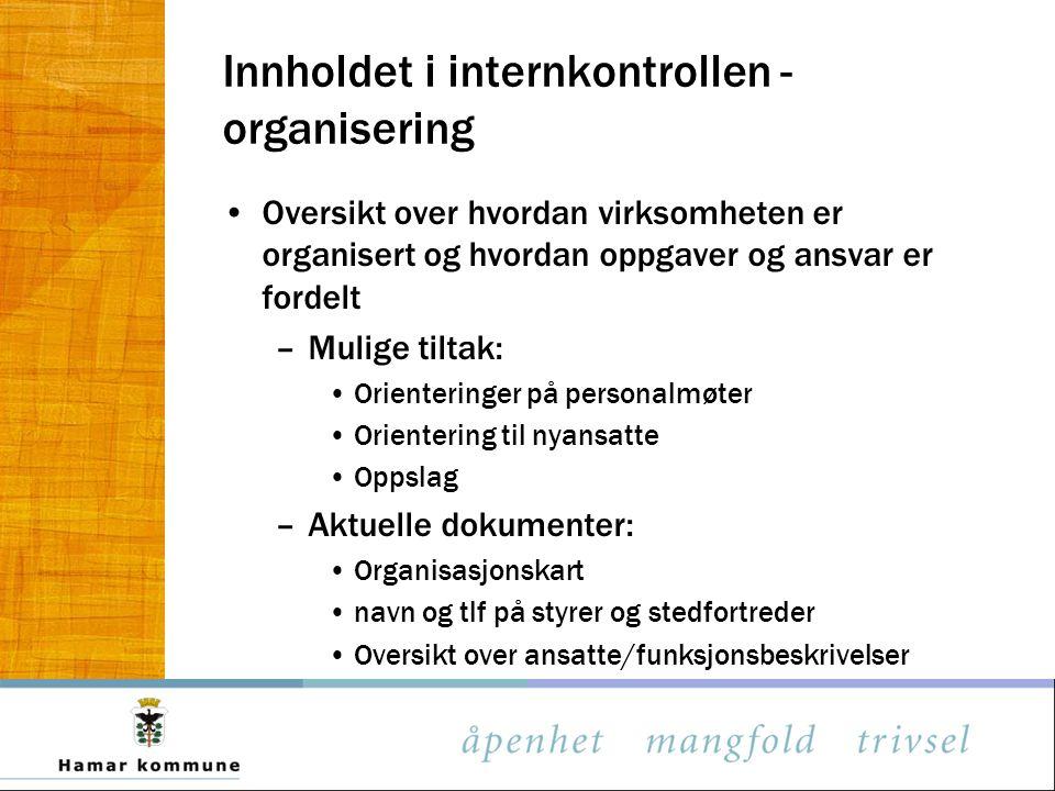Innholdet i internkontrollen - organisering