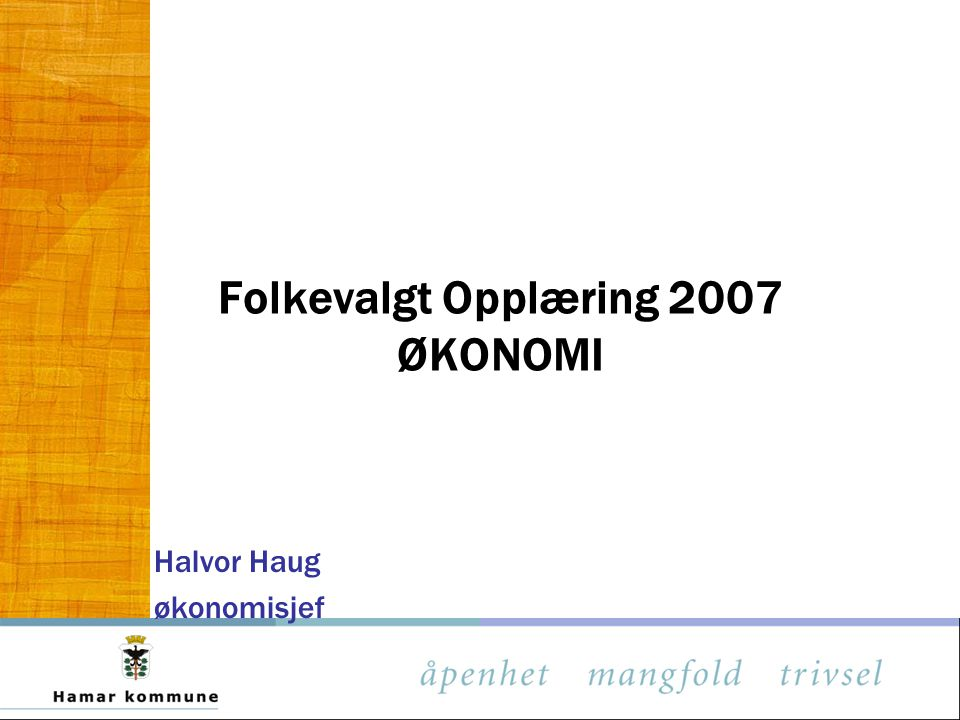 Folkevalgt Opplæring 2007 ØKONOMI