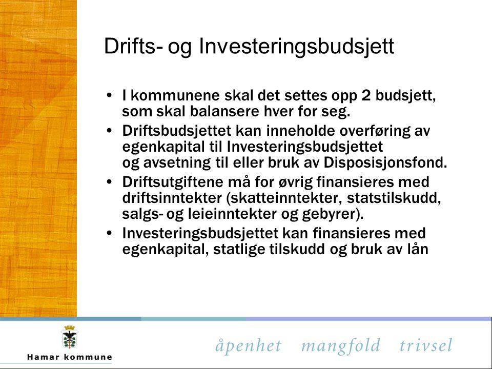 Drifts- og Investeringsbudsjett
