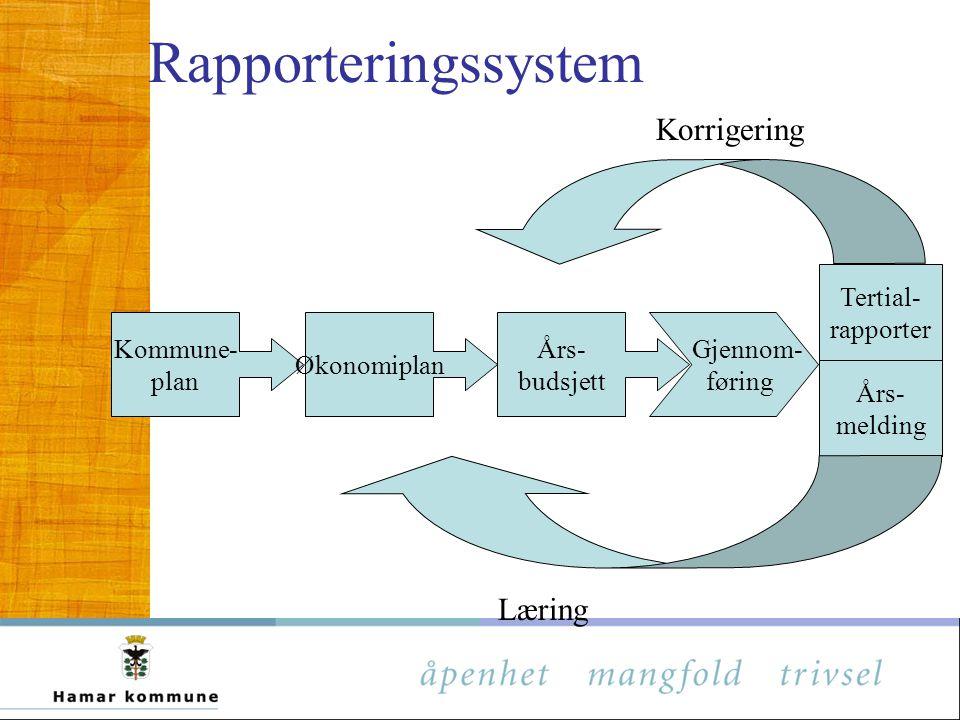 Rapporteringssystem Korrigering Læring Tertial- rapporter Kommune-