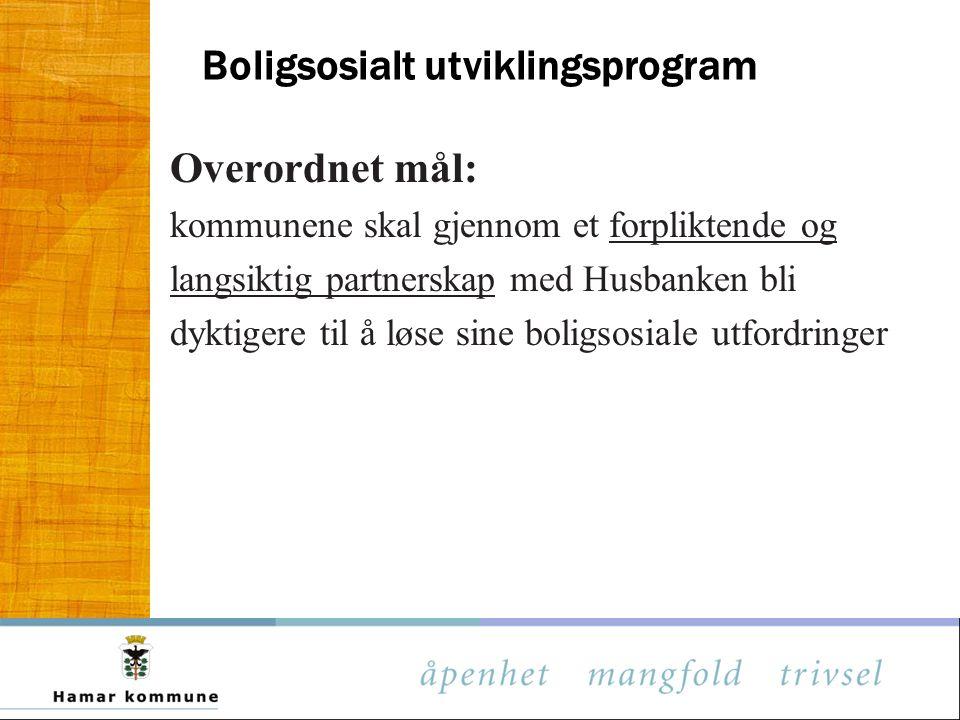 Boligsosialt utviklingsprogram