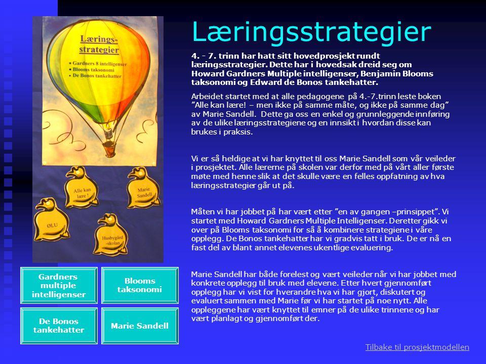 Læringsstrategier