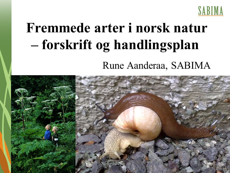 Fremmede arter i norsk natur – forskrift og handlingsplan