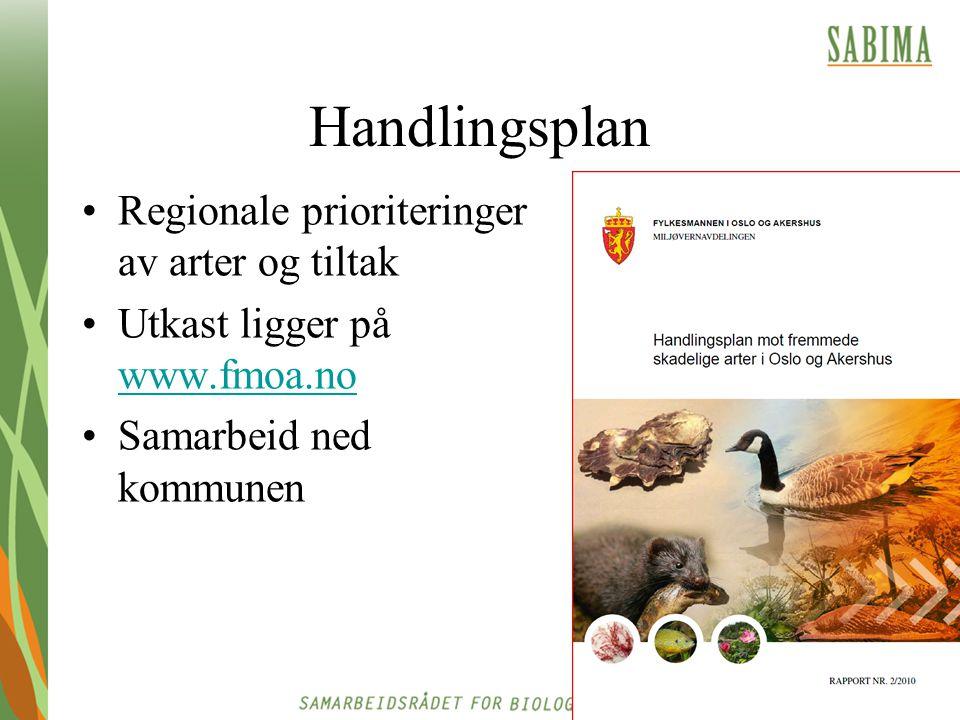 Handlingsplan Regionale prioriteringer av arter og tiltak