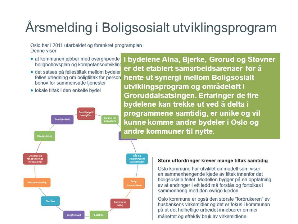 Årsmelding i Boligsosialt utviklingsprogram