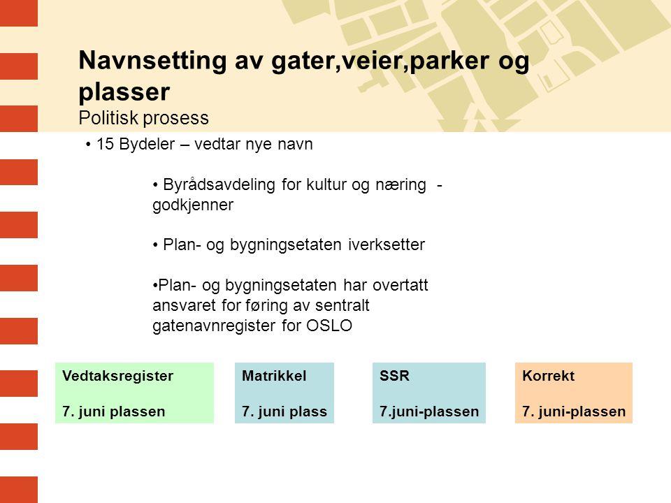 Navnsetting av gater,veier,parker og plasser Politisk prosess