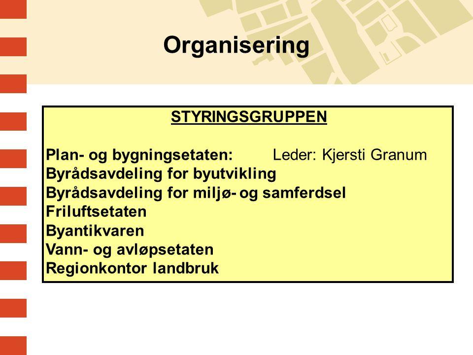 Organisering STYRINGSGRUPPEN