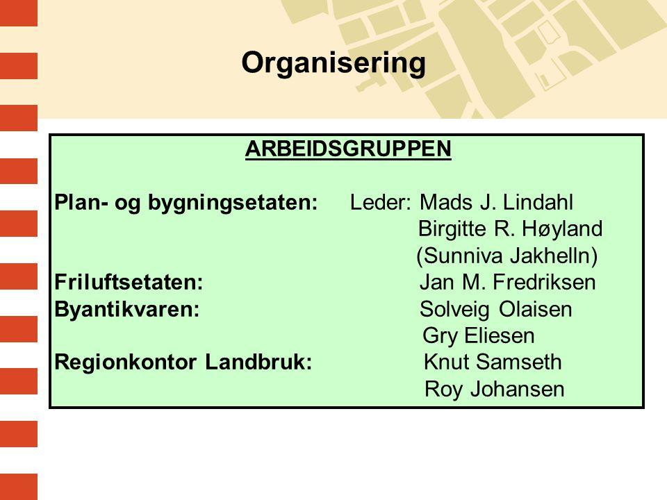 Organisering ARBEIDSGRUPPEN