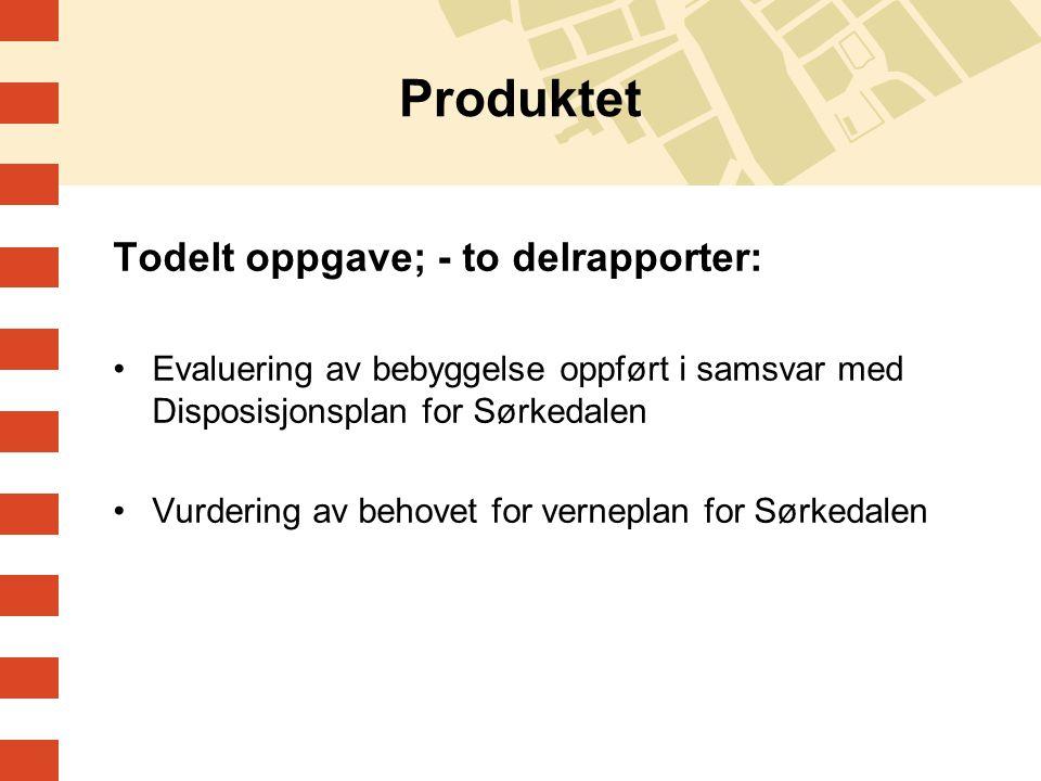 Produktet Todelt oppgave; - to delrapporter: