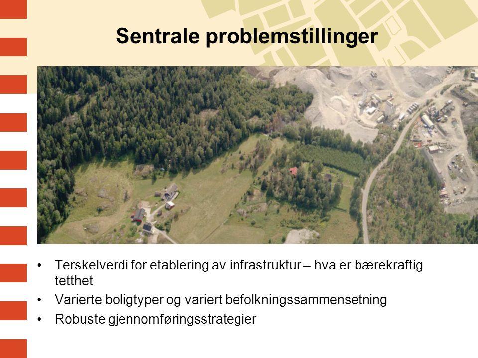 Sentrale problemstillinger