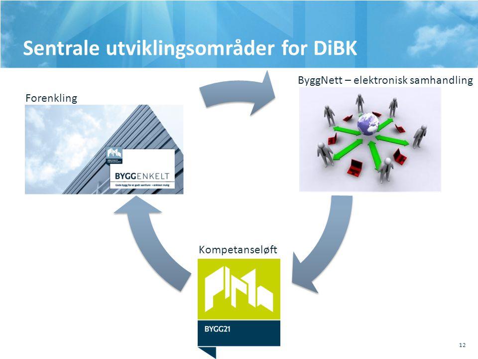 Sentrale utviklingsområder for DiBK