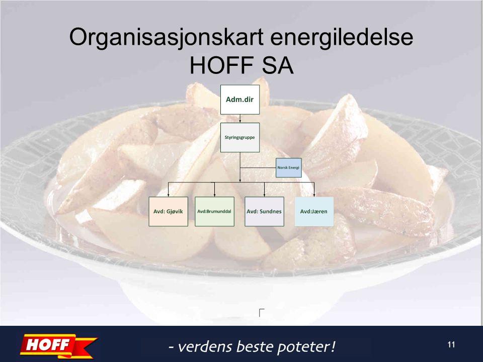 Organisasjonskart energiledelse HOFF SA