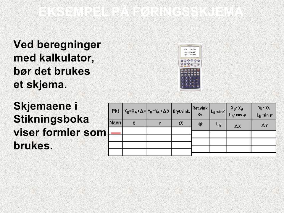 EKSEMPEL PÅ FØRINGSSKJEMA