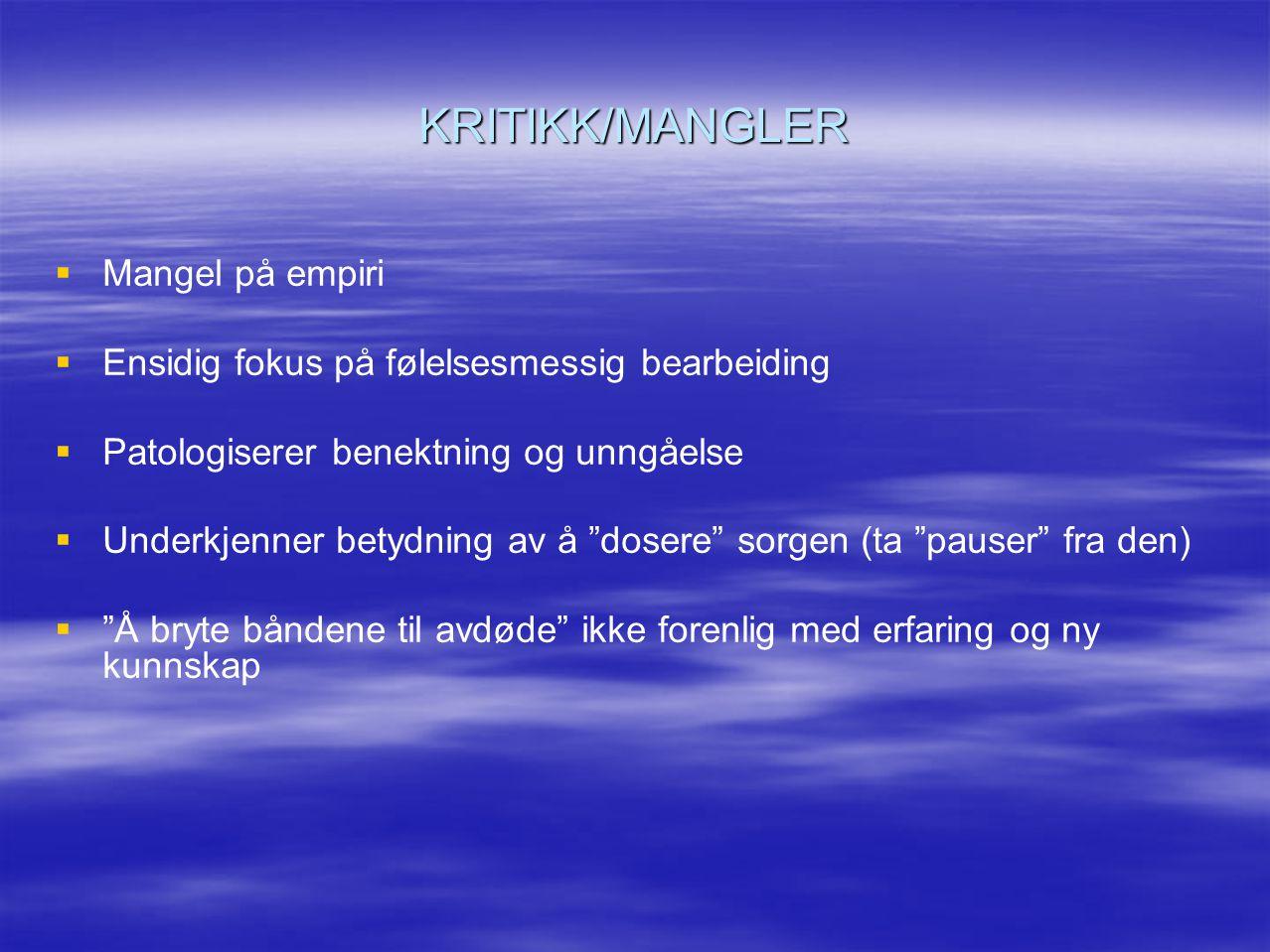 KRITIKK/MANGLER Mangel på empiri