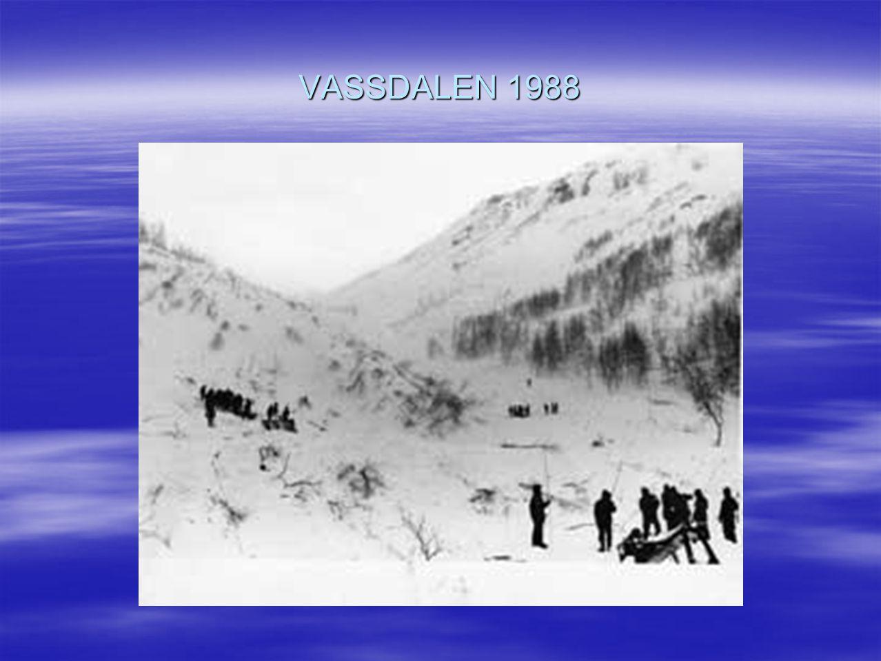 VASSDALEN 1988