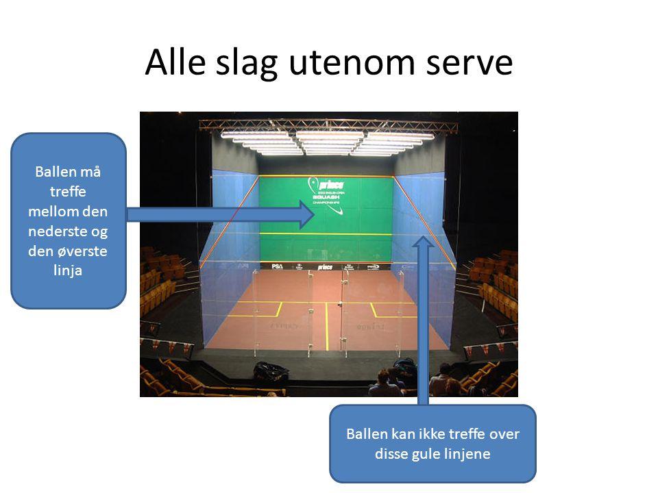 Alle slag utenom serve Ballen må treffe mellom den nederste og den øverste linja.