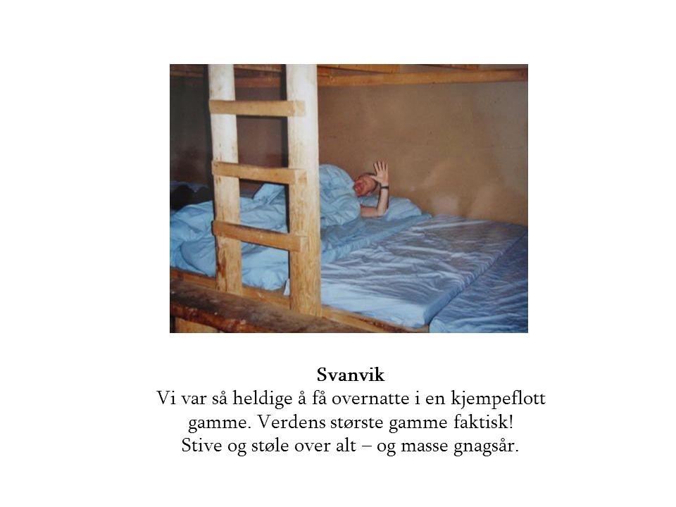 Svanvik Vi var så heldige å få overnatte i en kjempeflott gamme.
