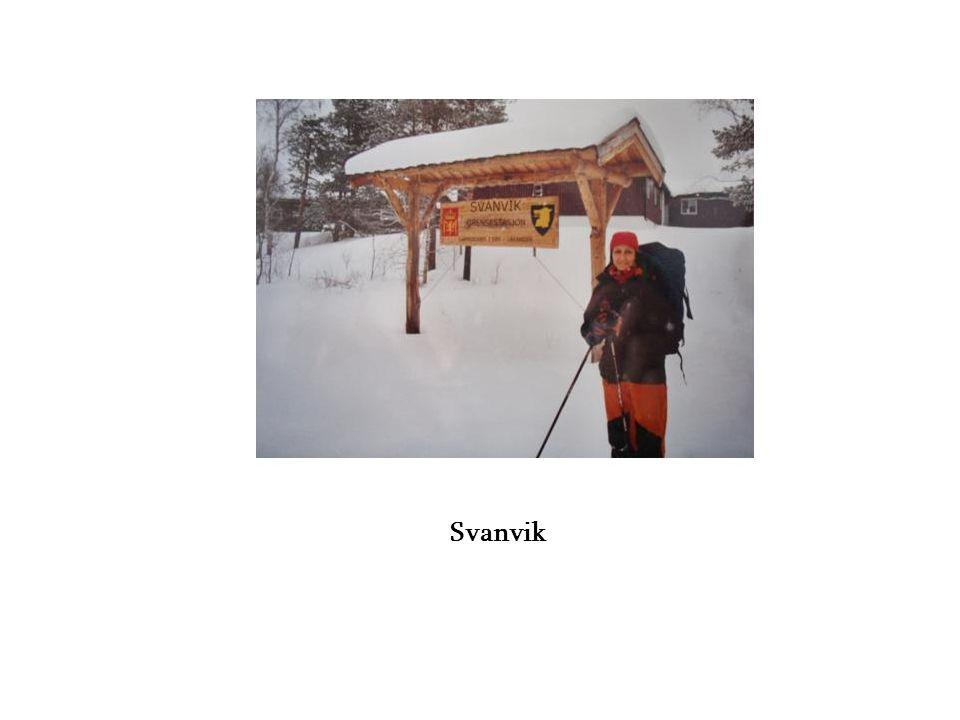 Svanvik