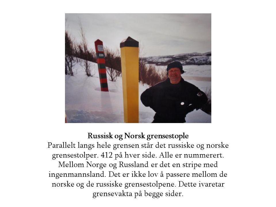 Russisk og Norsk grensestople Parallelt langs hele grensen står det russiske og norske grensestolper.