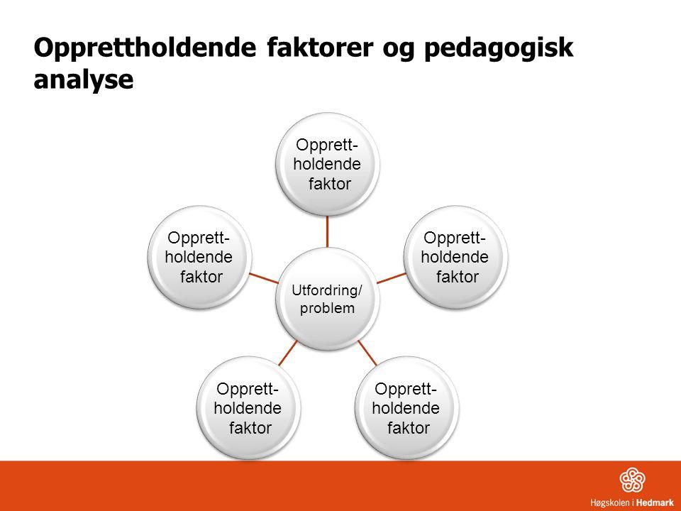 Opprettholdende faktorer og pedagogisk analyse