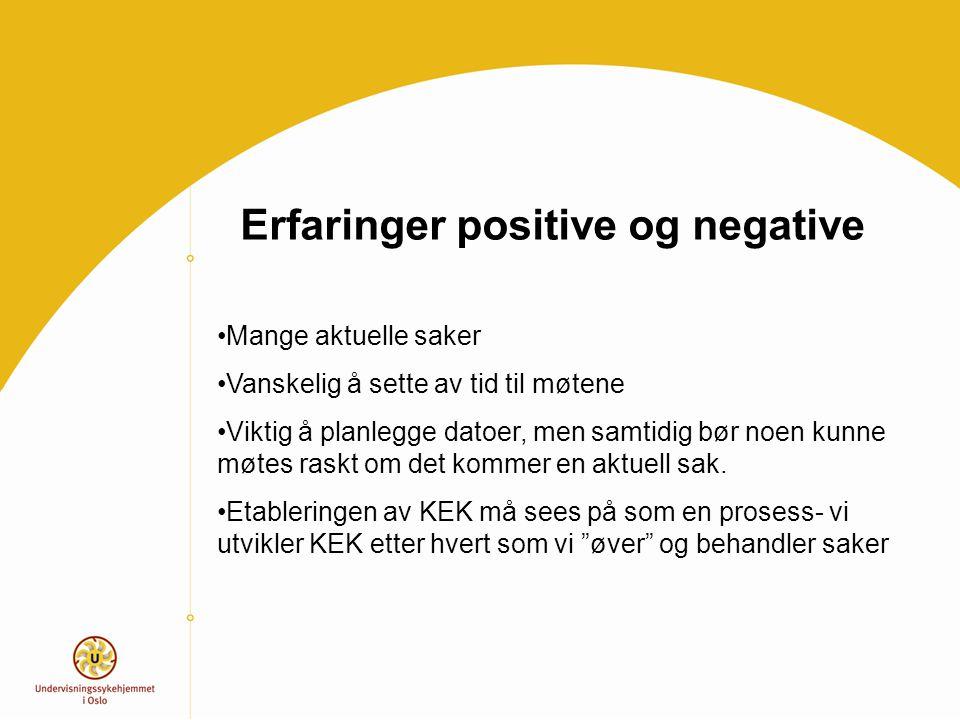 Erfaringer positive og negative