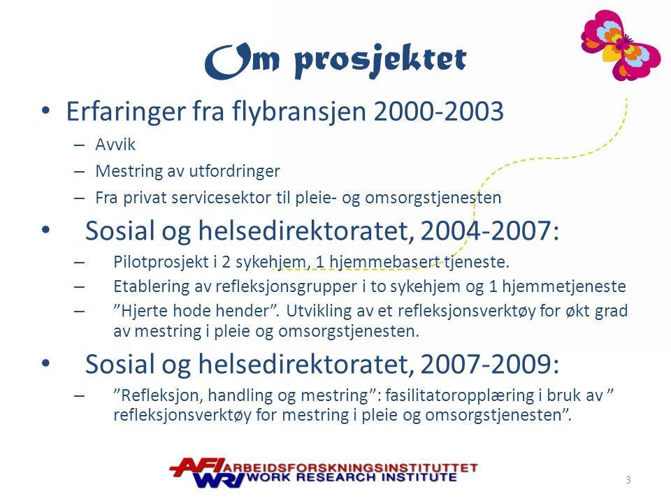Om prosjektet Erfaringer fra flybransjen 2000-2003