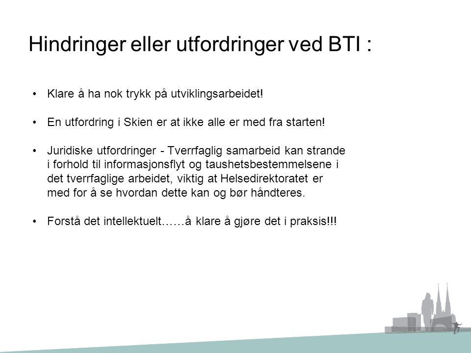 Hindringer eller utfordringer ved BTI :