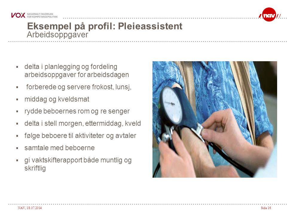 Eksempel på profil: Pleieassistent Arbeidsoppgaver