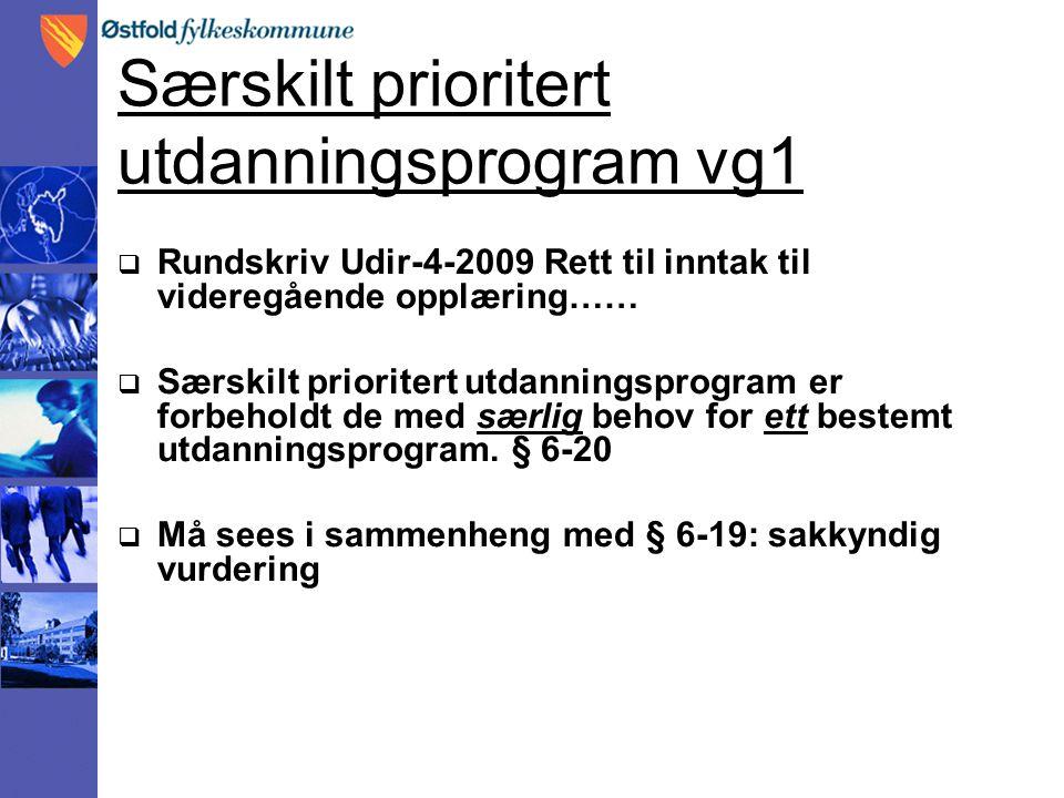 Særskilt prioritert utdanningsprogram vg1