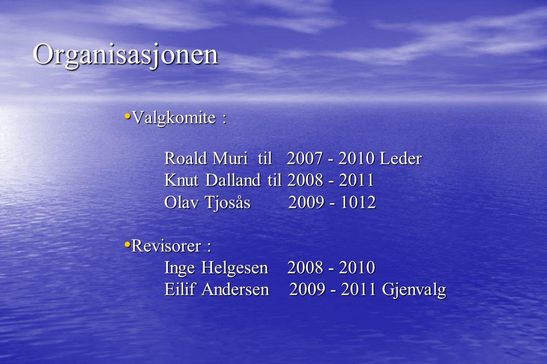 Organisasjonen Noter: Eilif Andersen VO: Per Steinum