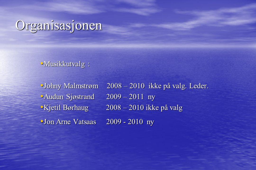 Organisasjonen Styret 2009 Formann: Åge Kibsgård til 2010