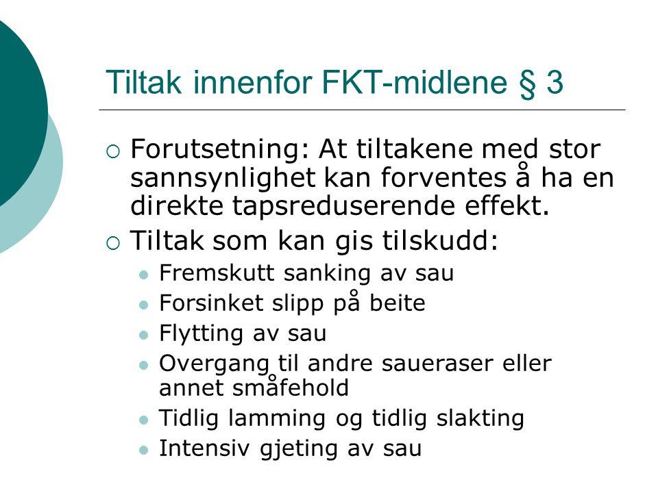 Tiltak innenfor FKT-midlene § 3