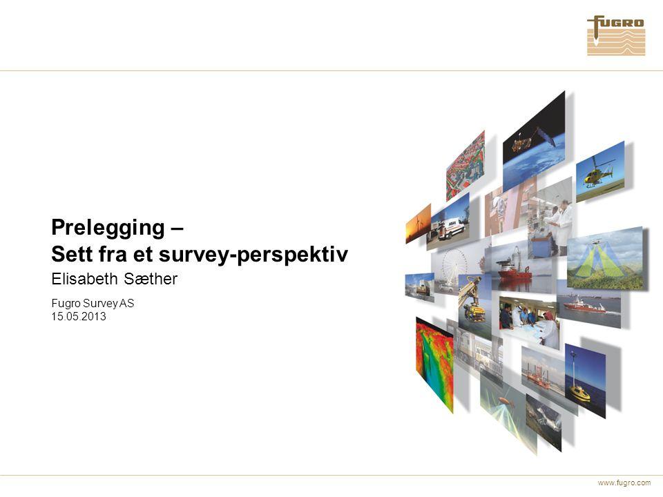 Sett fra et survey-perspektiv
