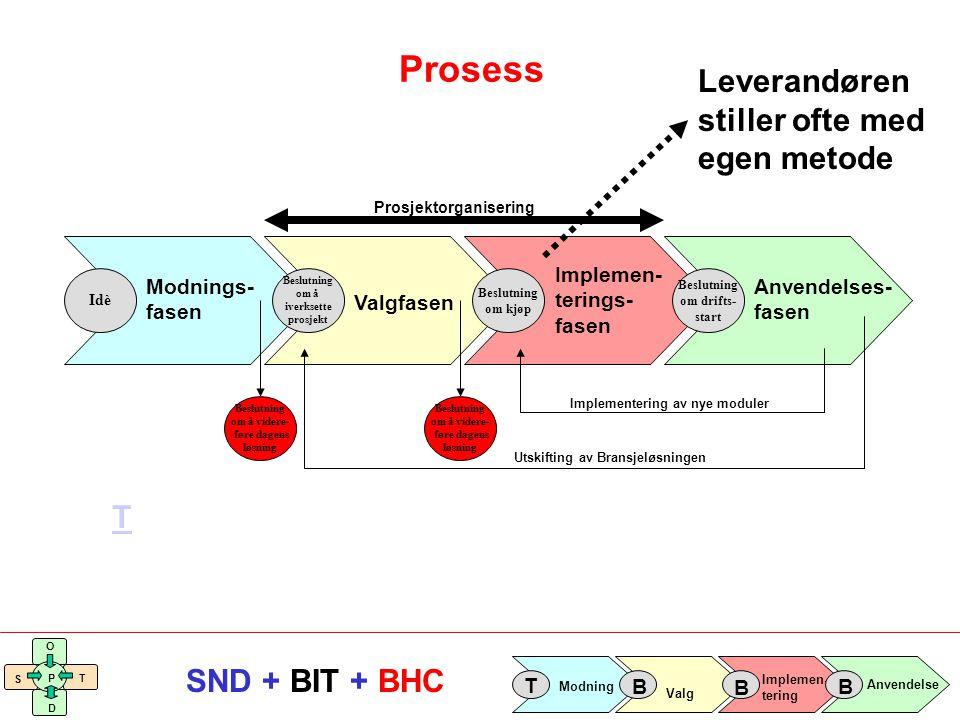 Prosess Leverandøren stiller ofte med egen metode T Implemen- terings-