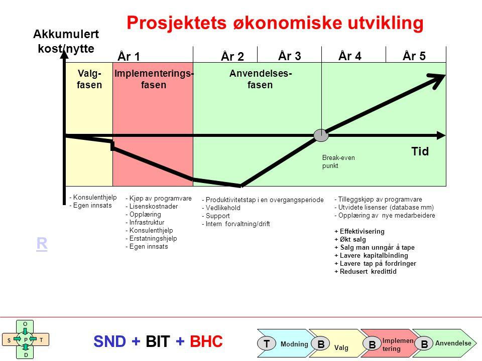 Prosjektets økonomiske utvikling